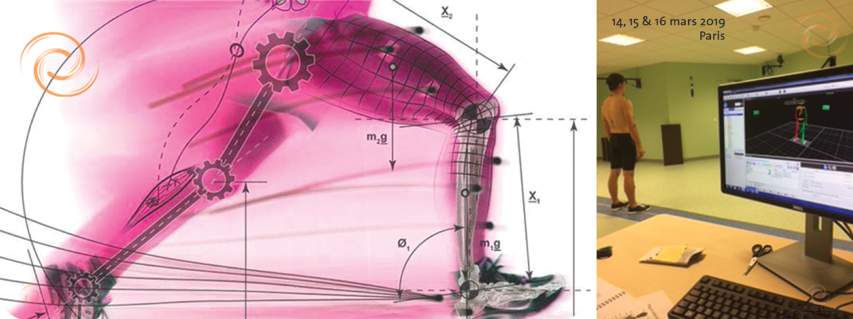 Permalien vers:De l'analyse biomécanique à la clinique posturale