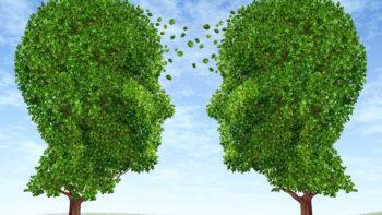 Permalien vers:Prévention & Mieux-être
