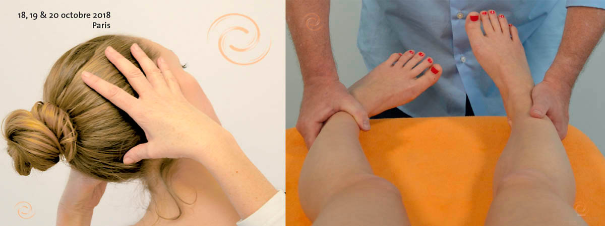 Permalien vers:Examen clinique posturo-cinétique